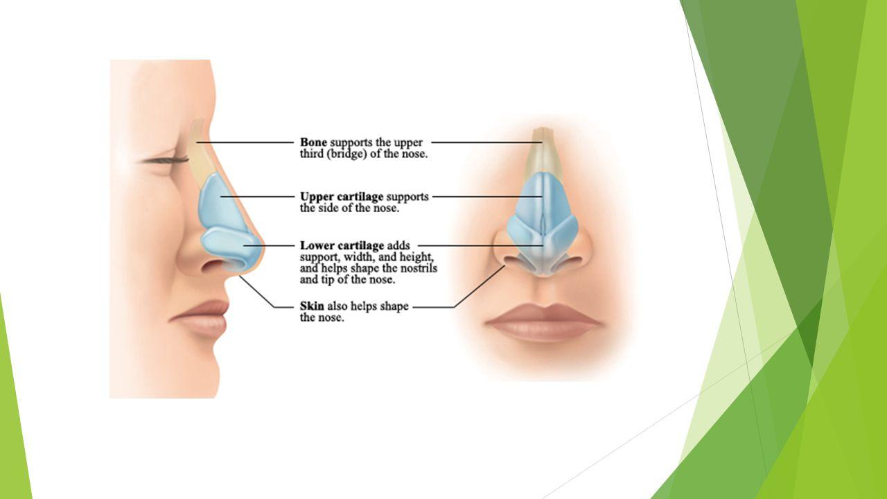 Επιπλοκές  Ασσυμετρίες  Δυσχέρεια στην αναπνοή  Δυσαρέσκεια ασθενή  Επανεγχείρηση