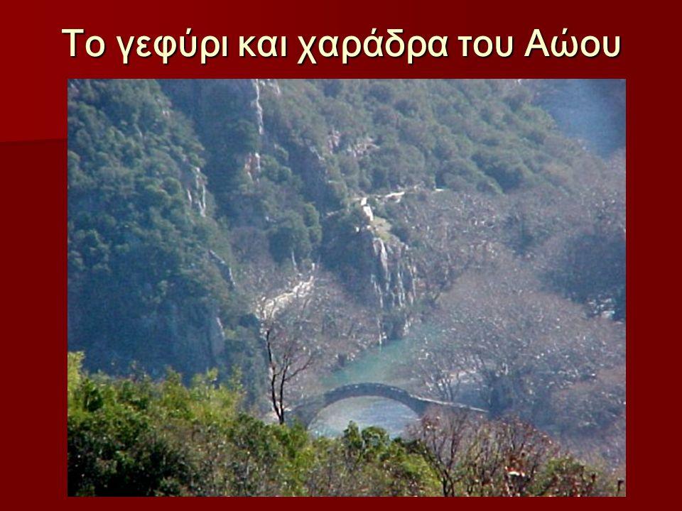 Το γεφύρι και χαράδρα του Αώου