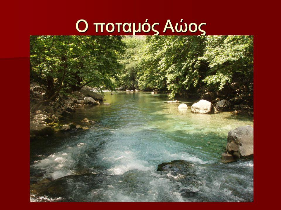 Ο ποταμός Αώος