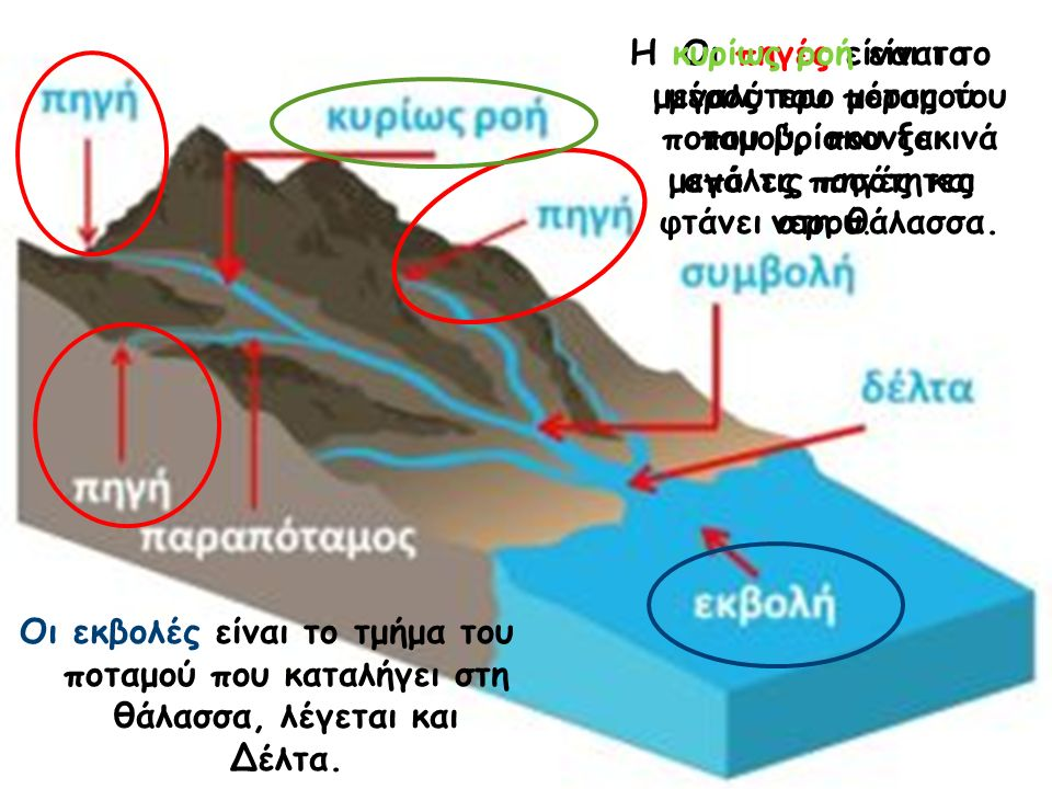 Οι πηγές είναι το μέρος του ποταμού που βρίσκονται μεγάλες ποσότητες νερού. Η κυρίως ροή είναι το μεγαλύτερο μέρος του ποταμού, που ξεκινά από τις πηγ