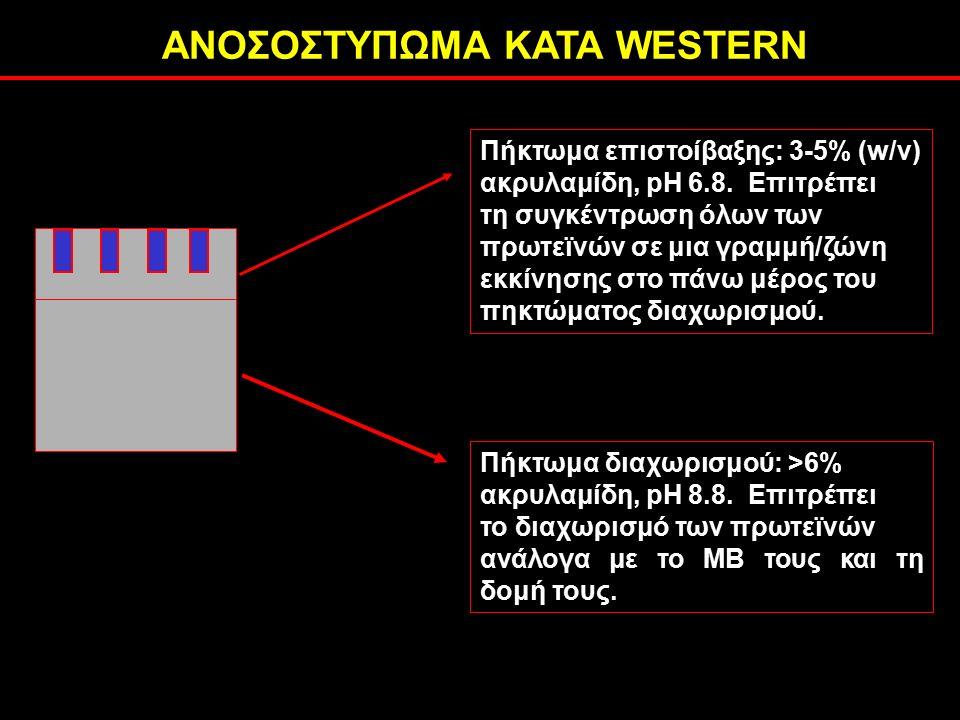 ΑΝΟΣΟΣΤΥΠΩΜΑ ΚΑΤΑ WESTERN Πήκτωμα επιστοίβαξης: 3-5% (w/v) ακρυλαμίδη, pH 6.8.