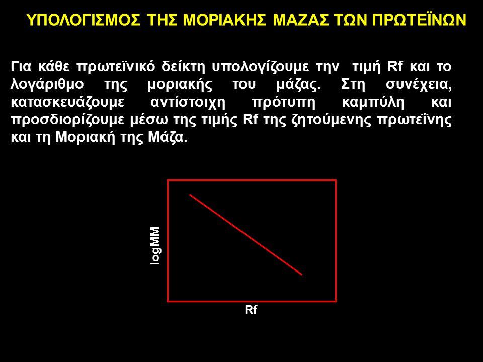 Rf logMΜ ΥΠΟΛΟΓΙΣΜΟΣ ΤΗΣ ΜΟΡΙΑΚΗΣ ΜΑΖΑΣ ΤΩΝ ΠΡΩΤΕΪΝΩΝ Για κάθε πρωτεϊνικό δείκτη υπολογίζουμε την τιμή Rf και το λογάριθμο της μοριακής του μάζας.
