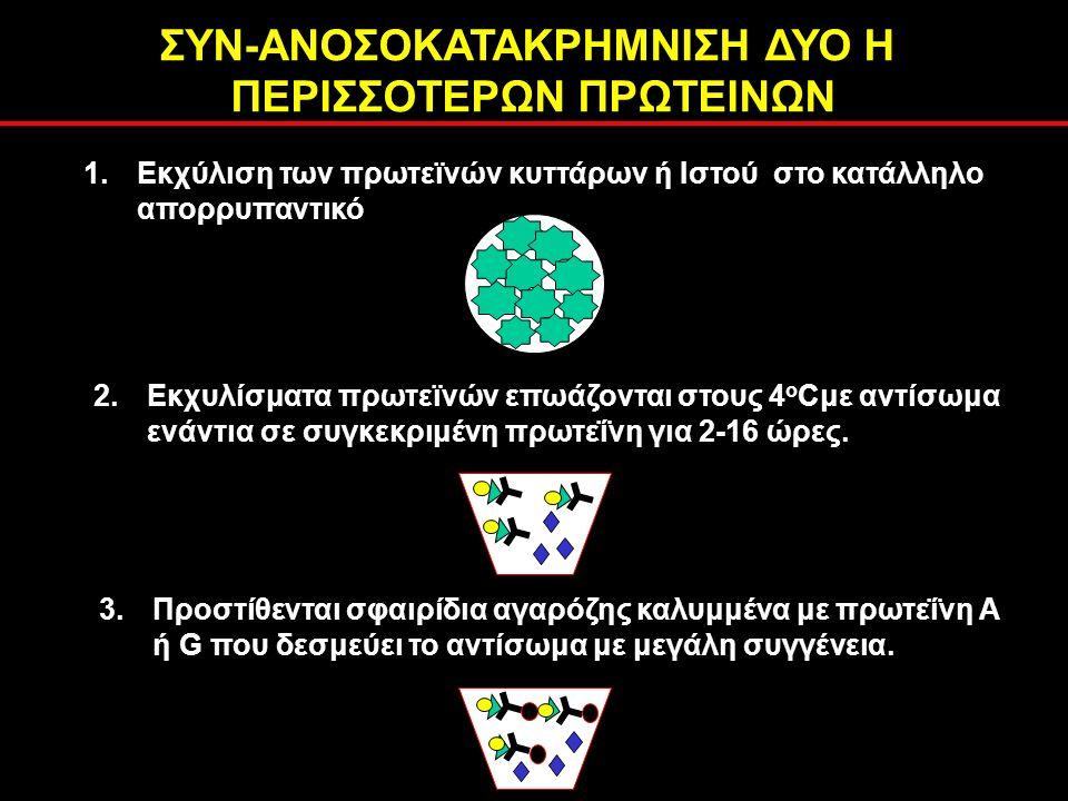 1.Εκχύλιση των πρωτεϊνών κυττάρων ή Ιστού στο κατάλληλο απορρυπαντικό 2.Εκχυλίσματα πρωτεϊνών επωάζονται στους 4 ο Cμε αντίσωμα ενάντια σε συγκεκριμένη πρωτεΐνη για 2-16 ώρες.