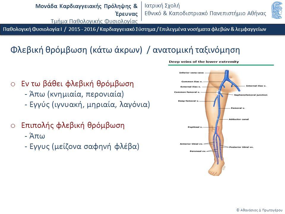 Μονάδα Καρδιαγγειακής Πρόληψης & Έρευνας Τμήμα Παθολογικής Φυσιολογίας Ιατρική Σχολή Εθνικό & Καποδιστριακό Πανεπιστήμιο Αθήνας © Αθανάσιος Δ Πρωτογέρου Φλεβική θρόμβωση (κάτω άκρων) / ανατομική ταξινόμηση o Εν τω βάθει φλεβική θρόμβωση - Άπω (κνημιαία, περονιαία) - Εγγύς (ιγνυακή, μηριαία, λαγόνια) o Επιπολής φλεβική θρόμβωση - Άπω - Εγγυς (μείζονα σαφηνή φλέβα) Παθολογική Φυσιολογία Ι / 2015 - 2016 / Καρδιαγγειακό Σύστημα / Επιλεγμένα νοσήματα φλεβών & λεμφαγγείων