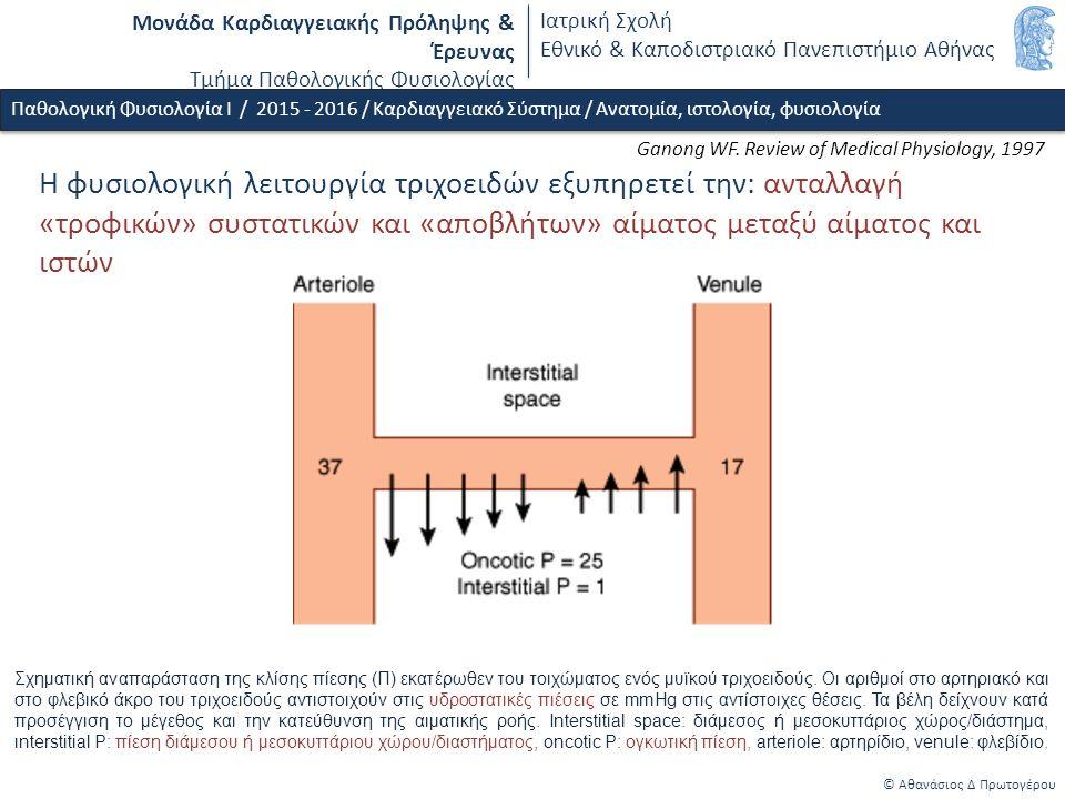 Μονάδα Καρδιαγγειακής Πρόληψης & Έρευνας Τμήμα Παθολογικής Φυσιολογίας Ιατρική Σχολή Εθνικό & Καποδιστριακό Πανεπιστήμιο Αθήνας Ganong WF.