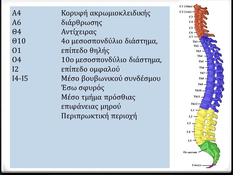 Επίπεδ o τραυμα τισμoύ Σημείo με ικανότητα αίσθησης Α4 Α6 Θ4 Θ10 O1 O4 Ι2 Ι4-Ι5 Κορυφή ακρωμιοκλειδικής διάρθρωσης Αντίχειρας 4ο μεσοσπονδύλιο διάστημα, επίπεδο θηλής 10ο μεσοσπονδύλιο διάστημα, επίπεδο ομφαλού Μέσο βουβωνικού συνδέσμου Έσω σφυρός Μέσο τμήμα πρόσθιας επιφάνειας μηρού Περιπρωκτική περιοχή