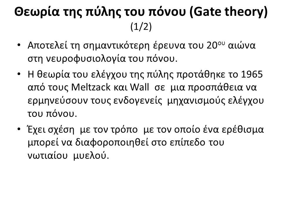 Θεωρία της πύλης του πόνου (Gate theory) (1/2) Αποτελεί τη σηµαντικότερη έρευνα του 20 ου αιώνα στη νευροφυσιολογία του πόνου.