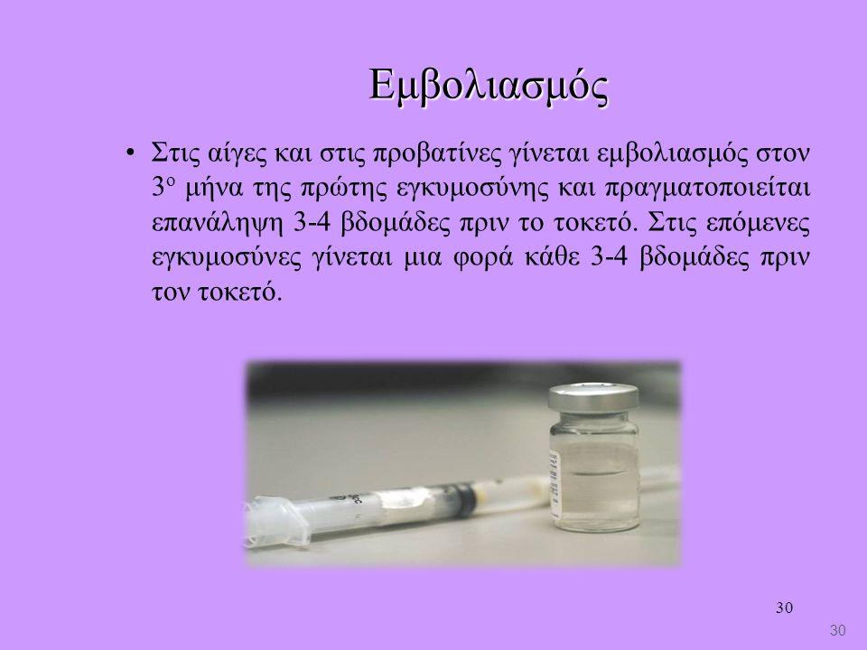 30 Εμβολιασμός Στις αίγες και στις προβατίνες γίνεται εμβολιασμός στον 3 ο μήνα της πρώτης εγκυμοσύνης και πραγματοποιείται επανάληψη 3-4 βδομάδες πριν το τοκετό.