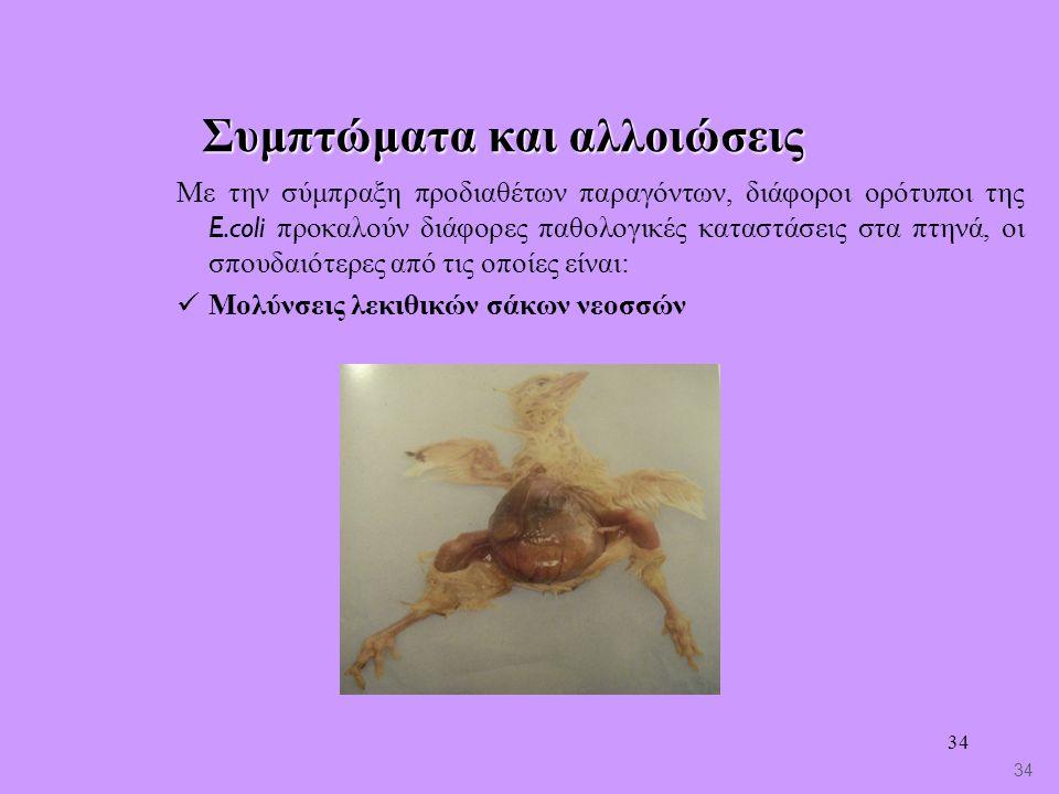 34 Συμπτώματα και αλλοιώσεις Με την σύμπραξη προδιαθέτων παραγόντων, διάφοροι ορότυποι της E.coli προκαλούν διάφορες παθολογικές καταστάσεις στα πτηνά, οι σπουδαιότερες από τις οποίες είναι: Μολύνσεις λεκιθικών σάκων νεοσσών 34