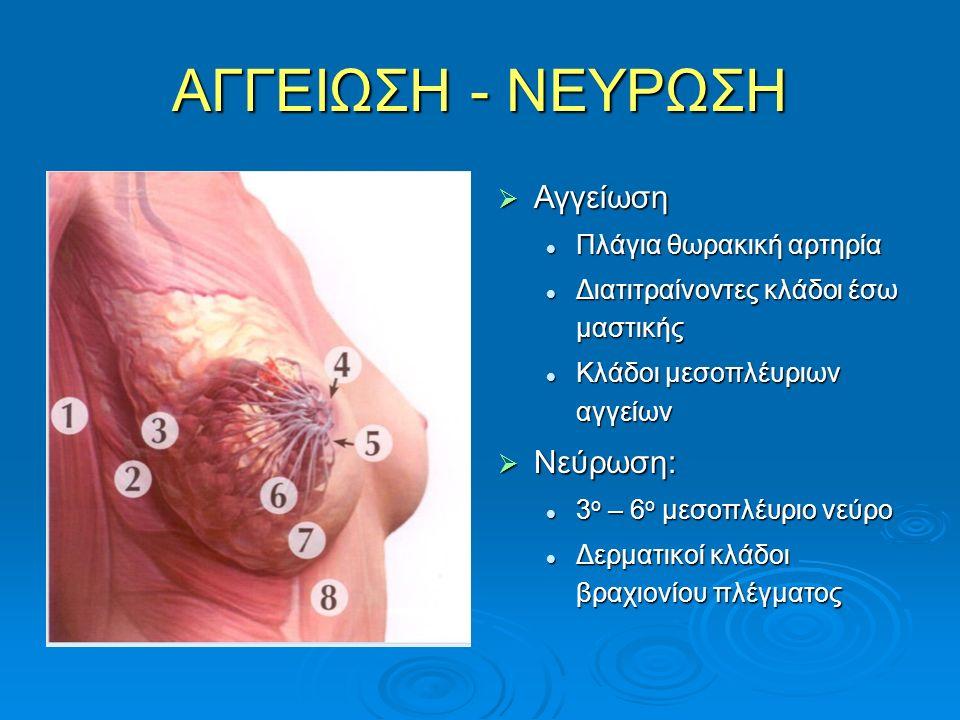 ΑΓΓΕΙΩΣΗ - ΝΕΥΡΩΣΗ  Αγγείωση Πλάγια θωρακική αρτηρία Διατιτραίνοντες κλάδοι έσω μαστικής Κλάδοι μεσοπλέυριων αγγείων  Νεύρωση: 3 ο – 6 ο μεσοπλέυριο