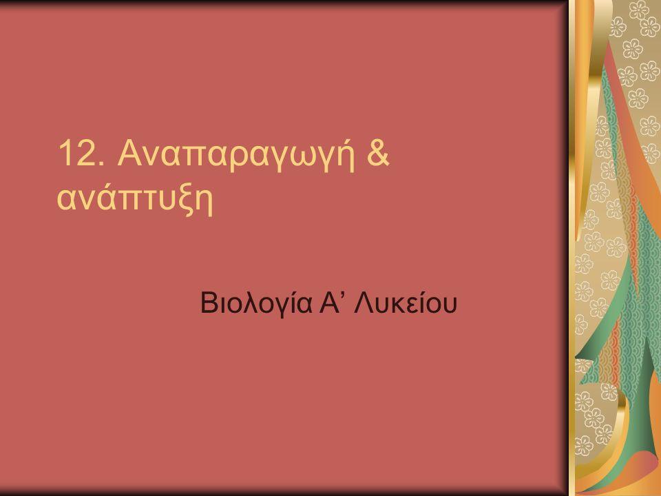 12. Αναπαραγωγή & ανάπτυξη Βιολογία Α' Λυκείου