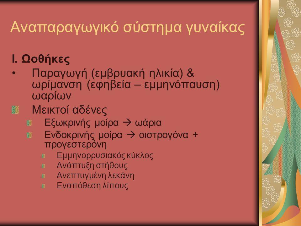 I. Ωοθήκες Παραγωγή (εμβρυακή ηλικία) & ωρίμανση (εφηβεία – εμμηνόπαυση) ωαρίων Μεικτοί αδένες Εξωκρινής μοίρα  ωάρια Ενδοκρινής μοίρα  οιστρογόνα +