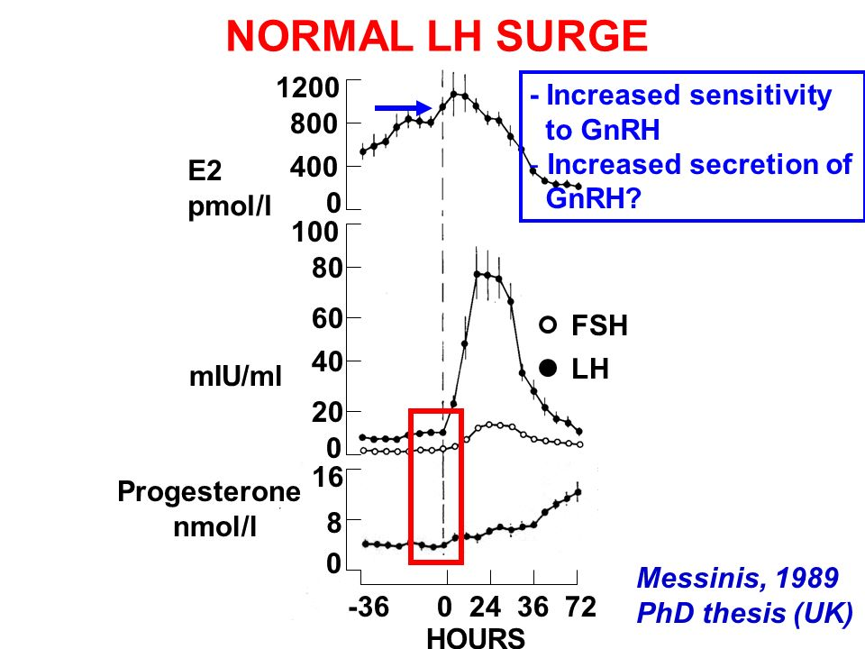 80 60 40 20 1200 800 400 FSH LH E2 pmol/l mIU/ml 0 16 8 0 -36 0 24 36 72 HOURS Progesterone nmol/l 0 100 NORMAL LH SURGE Messinis, 1989 PhD thesis (UK) - Increased sensitivity to GnRH - Increased secretion of GnRH?