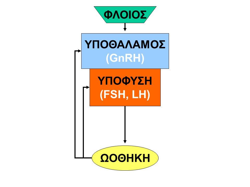 ΥΠΟΘΑΛΑΜΟΣ (GnRH) ΥΠΟΦΥΣΗ (FSH, LH) ΩΟΘΗΚΗ ΦΛΟΙΟΣ