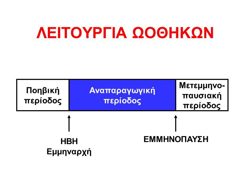ΛΕΙΤΟΥΡΓΙΑ ΩΟΘΗΚΩΝ Ποηβική περίοδος Μετεμμηνο- παυσιακή περίοδος Αναπαραγωγική περίοδος ΗΒΗ Εμμηναρχή ΕΜΜΗΝΟΠΑΥΣΗ