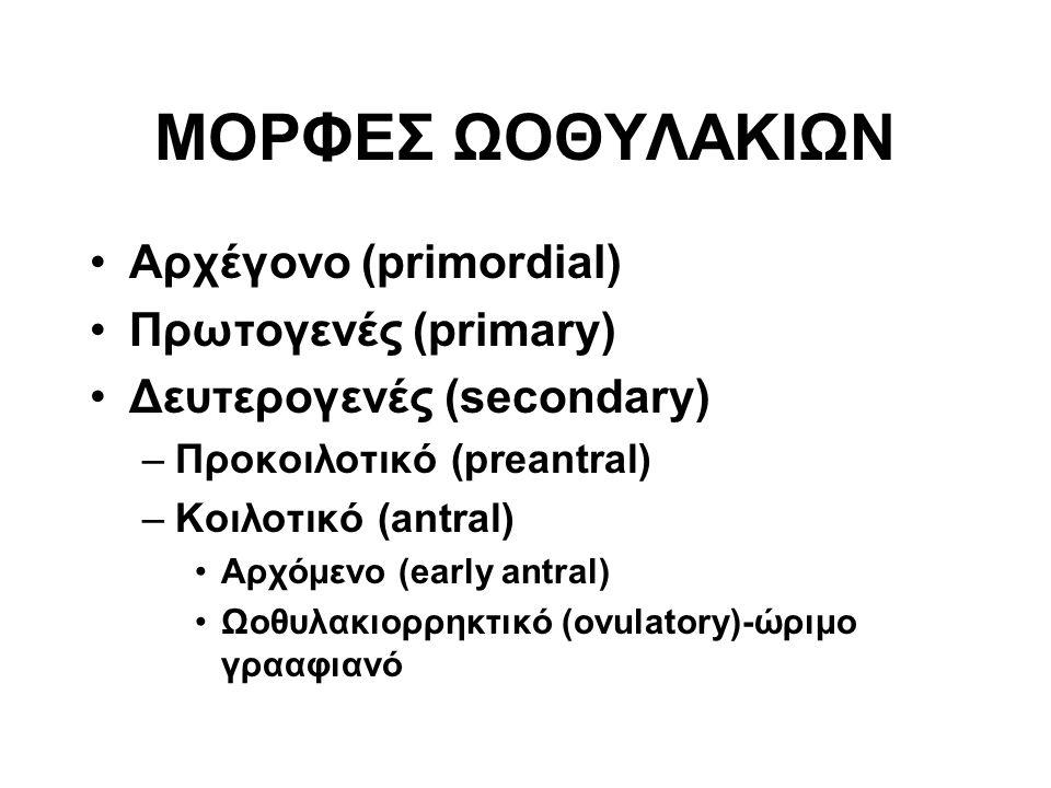 ΜΟΡΦΕΣ ΩΟΘΥΛΑΚΙΩΝ Αρχέγονο (primordial) Πρωτογενές (primary) Δευτερογενές (secondary) –Προκοιλοτικό (preantral) –Κοιλοτικό (antral) Αρχόμενο (early antral) Ωοθυλακιορρηκτικό (ovulatory)-ώριμο γρααφιανό