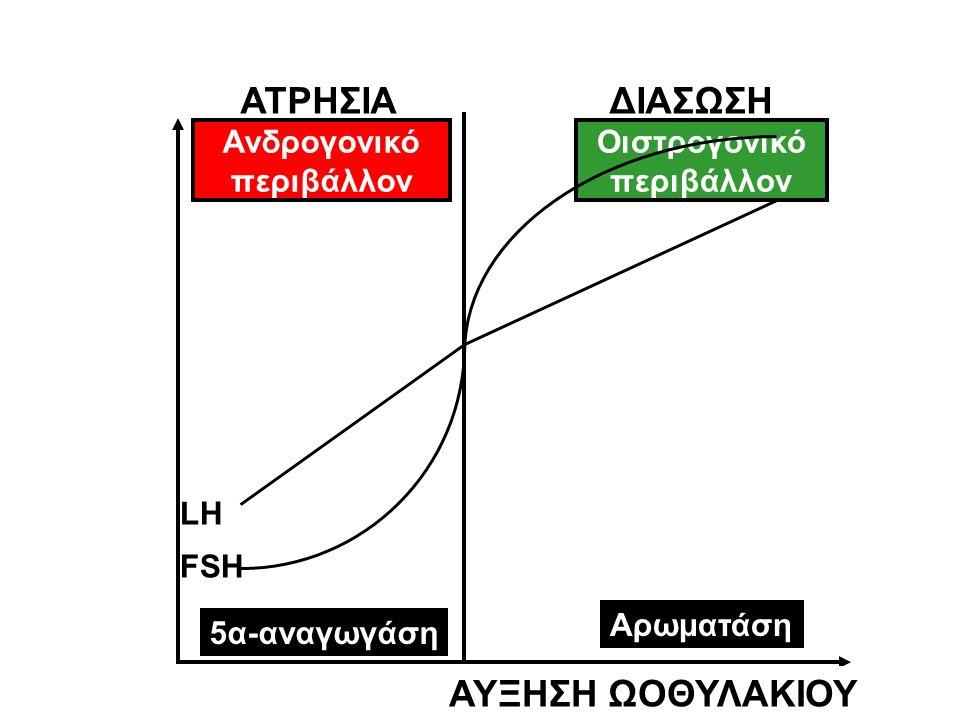 Ανδρογονικό περιβάλλον Οιστρογονικό περιβάλλον 5α-αναγωγάση FSH LH Αρωματάση ΑΥΞΗΣΗ ΩΟΘΥΛΑΚΙΟΥ ΑΤΡΗΣΙΑ ΔΙΑΣΩΣΗ
