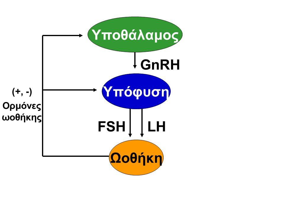 Υποθάλαμος Υπόφυση Ωοθήκη FSHLH GnRH (+, -) Ορμόνες ωοθήκης