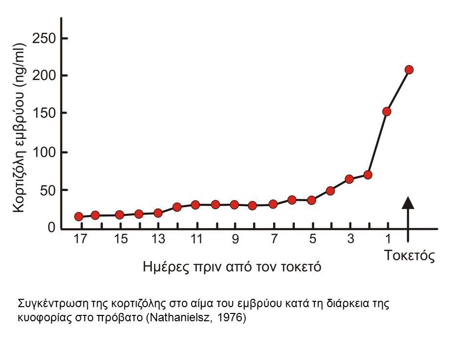 Συγκέντρωση της κορτιζόλης στο αίμα του εμβρύου κατά τη διάρκεια της κυοφορίας στο πρόβατο (Νathanielsz, 1976)
