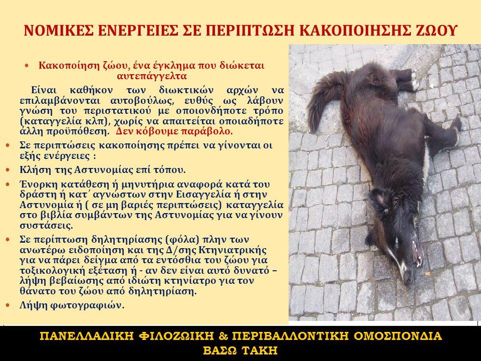 ΝΟΜΙΚΕΣ ΕΝΕΡΓΕΙΕΣ ΣΕ ΠΕΡΙΠΤΩΣΗ ΚΑΚΟΠΟΙΗΣΗΣ ΖΩΟΥ Κακοποίηση ζώου, ένα έγκλημα που διώκεται αυτεπάγγελτα Είναι καθήκον των διωκτικών αρχών να επιλαμβάνονται αυτοβούλως, ευθύς ως λάβουν γνώση του περιστατικού με οποιονδήποτε τρόπο ( καταγγελία κλπ ), χωρίς να απαιτείται οποιαδήποτε άλλη προϋπόθεση.