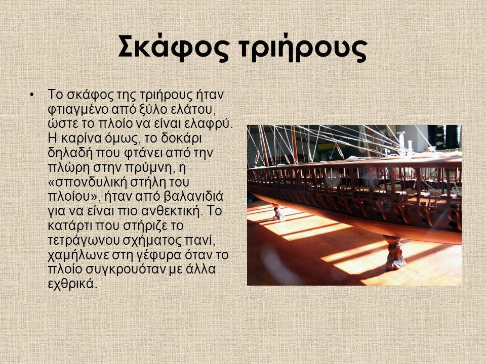 Σκάφος τριήρους Το σκάφος της τριήρους ήταν φτιαγμένο από ξύλο ελάτου, ώστε το πλοίο να είναι ελαφρύ.