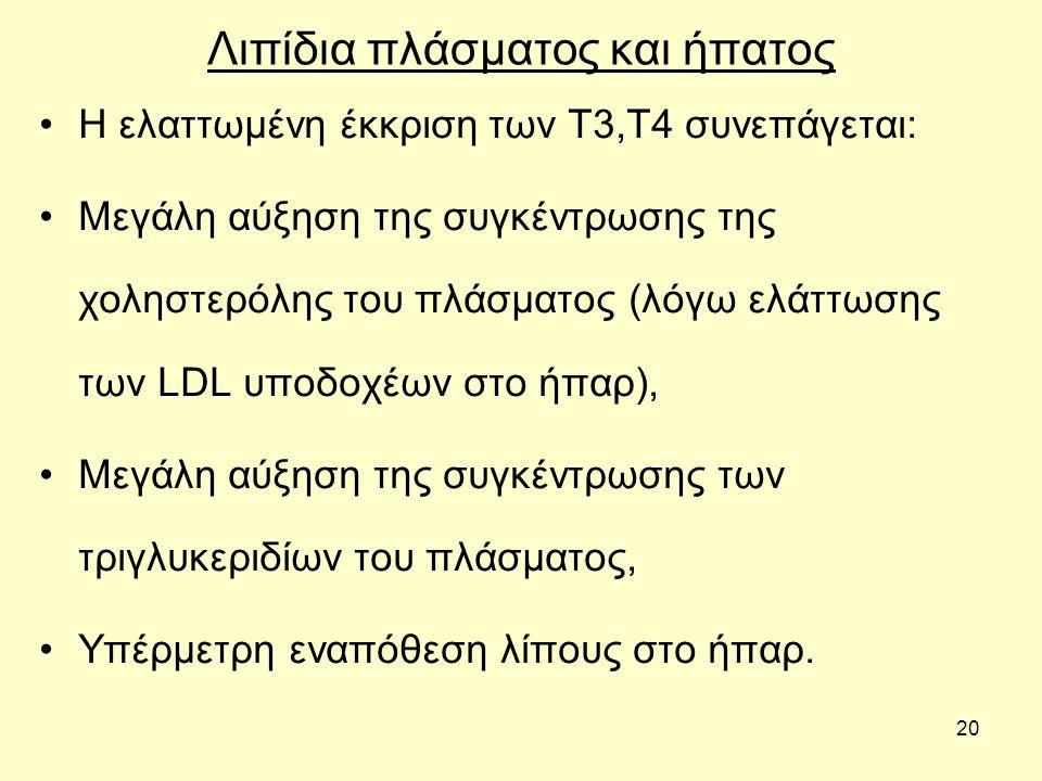 20 Λιπίδια πλάσματος και ήπατος Η ελαττωμένη έκκριση των Τ3,Τ4 συνεπάγεται: Μεγάλη αύξηση της συγκέντρωσης της χοληστερόλης του πλάσματος (λόγω ελάττωσης των LDL υποδοχέων στο ήπαρ), Μεγάλη αύξηση της συγκέντρωσης των τριγλυκεριδίων του πλάσματος, Υπέρμετρη εναπόθεση λίπους στο ήπαρ.