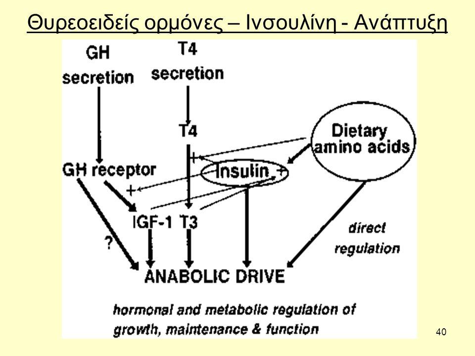 40 Θυρεοειδείς ορμόνες – Ινσουλίνη - Ανάπτυξη