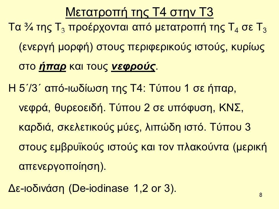 8 Τα ¾ της Τ 3 προέρχονται από μετατροπή της Τ 4 σε Τ 3 (ενεργή μορφή) στους περιφερικούς ιστούς, κυρίως στο ήπαρ και τους νεφρούς.