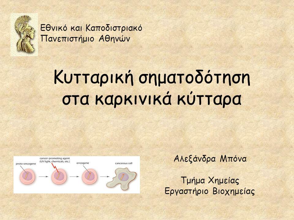 Κυτταρική σηματοδότηση στα καρκινικά κύτταρα Αλεξάνδρα Μπόνα Τμήμα Χημείας Εργαστήριο Βιοχημείας Εθνικό και Καποδιστριακό Πανεπιστήμιο Αθηνών