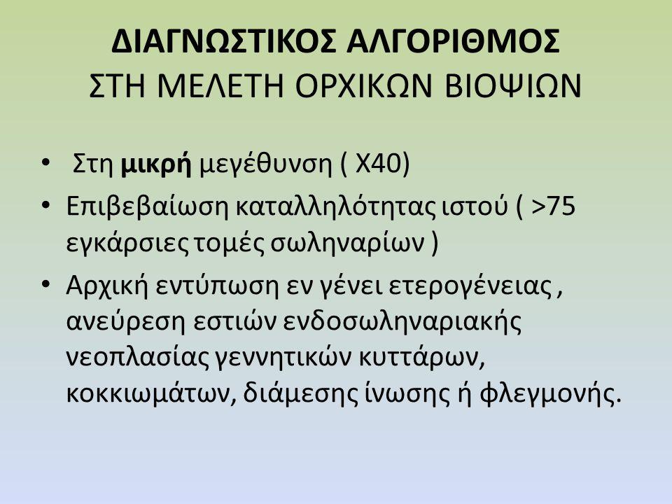 ΔΙΑΓΝΩΣΤΙΚΟΣ ΑΛΓΟΡΙΘΜΟΣ ΣΤΗ ΜΕΛΕΤΗ ΟΡΧΙΚΩΝ ΒΙΟΨΙΩΝ Στη μικρή μεγέθυνση ( Χ40) Επιβεβαίωση καταλληλότητας ιστού ( >75 εγκάρσιες τομές σωληναρίων ) Αρχι