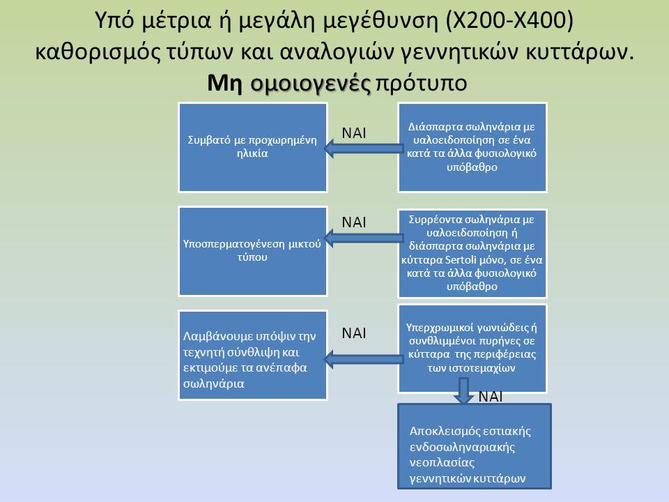 ομοιογενές Υπό μέτρια ή μεγάλη μεγέθυνση (Χ200-Χ400) καθορισμός τύπων και αναλογιών γεννητικών κυττάρων. Μη ομοιογενές πρότυπο Συμβατό με προχωρημένη