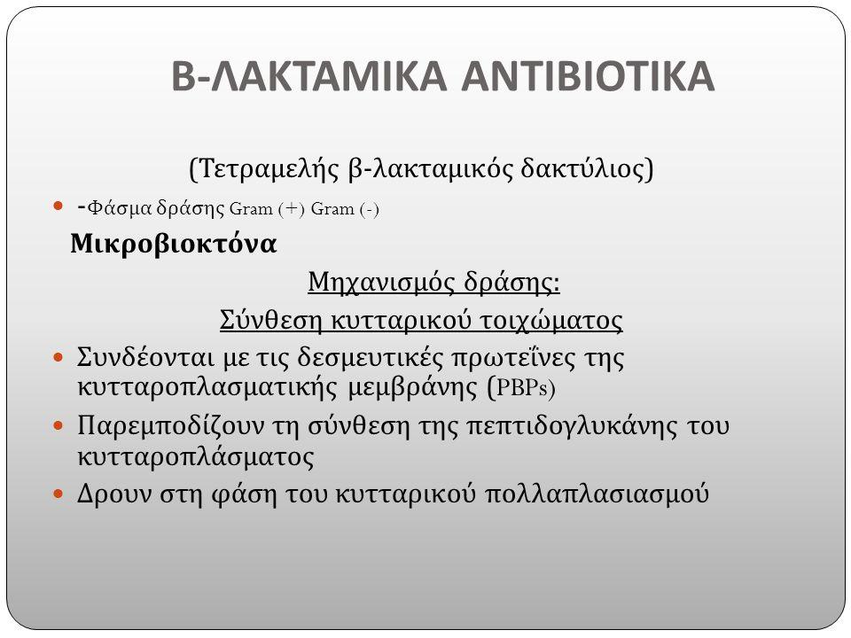 Β - ΛΑΚΤΑΜΙΚΑ ΑΝΤΙΒΙΟΤΙΚΑ ( Τετραμελής β - λακταμικός δακτύλιος ) - Φάσμα δράσης Gram (+) Gram (-) Μικροβιοκτόνα Μηχανισμός δράσης : Σύνθεση κυτταρικού τοιχώματος Συνδέονται με τις δεσμευτικές πρωτεΐνες της κυτταροπλασματικής μεμβράνης (PBPs) Παρεμποδίζουν τη σύνθεση της πεπτιδογλυκάνης του κυτταροπλάσματος Δρουν στη φάση του κυτταρικού πολλαπλασιασμού