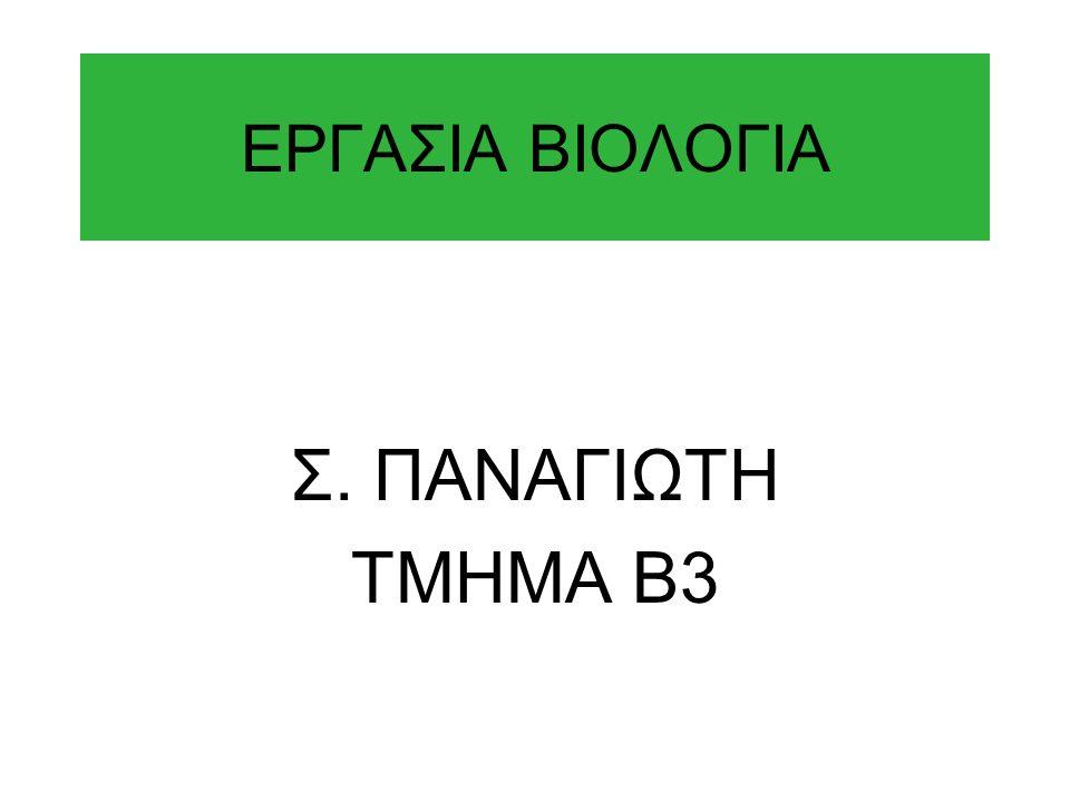 ΕΡΓΑΣΙΑ ΒΙΟΛΟΓΙΑ Σ. ΠΑΝΑΓΙΩΤΗ ΤΜΗΜΑ Β3