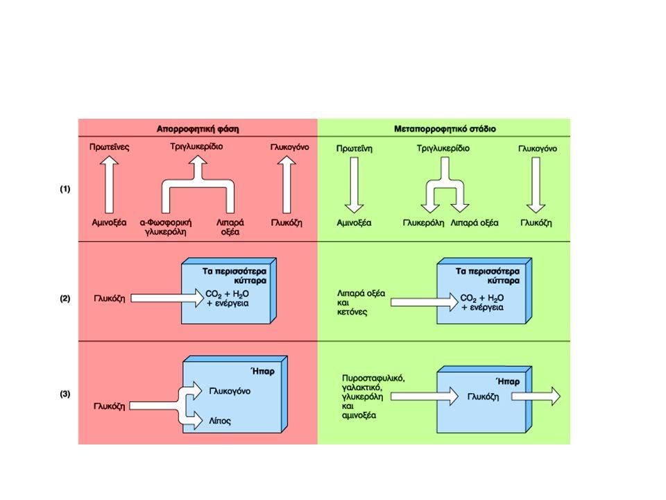 Μηχανισμοί Κέρδους ή Απώλειας Θερμότητας Ακτινοβολία Αγωγή Μεταφορά (δείκτης ψυχρότητας αέρα) Εξάτμιση – Άδηλη αναπνοή – Ιδρωτοποιοί αδένες