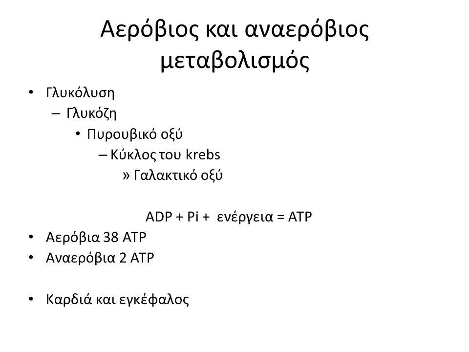 Αερόβιος και αναερόβιος μεταβολισμός Γλυκόλυση – Γλυκόζη Πυρουβικό οξύ – Κύκλος του krebs » Γαλακτικό οξύ ADP + Pi + ενέργεια = ATP Αερόβια 38 ATP Αναερόβια 2 ATP Καρδιά και εγκέφαλος