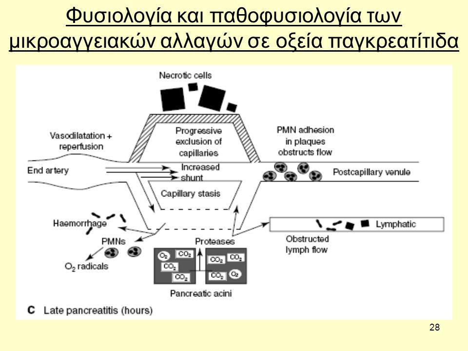 28 Φυσιολογία και παθοφυσιολογία των μικροαγγειακών αλλαγών σε οξεία παγκρεατίτιδα
