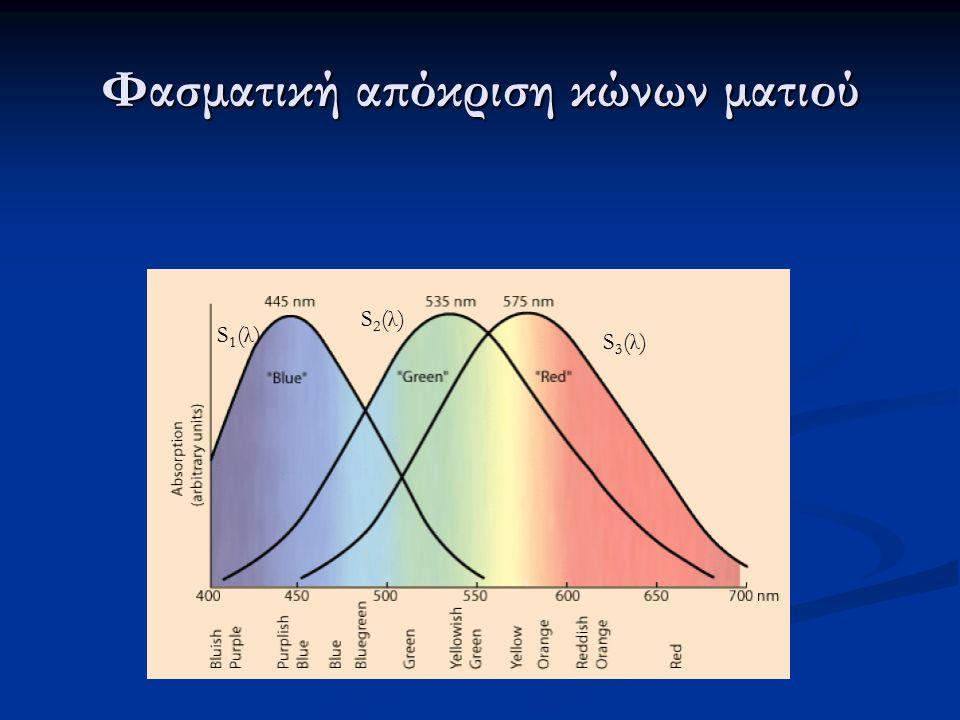 Φασματική απόκριση κώνων ματιού S1(λ)S1(λ) S2(λ)S2(λ) S3(λ)S3(λ)