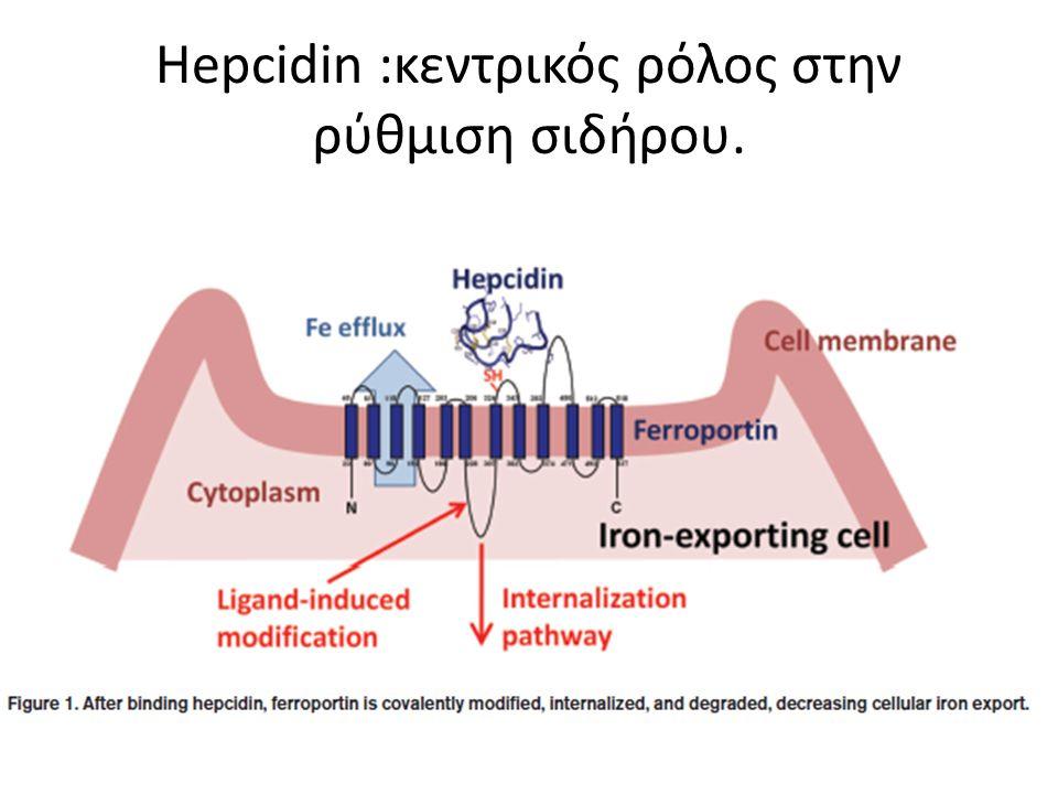 Ηepcidin :κεντρικός ρόλος στην ρύθμιση σιδήρου.