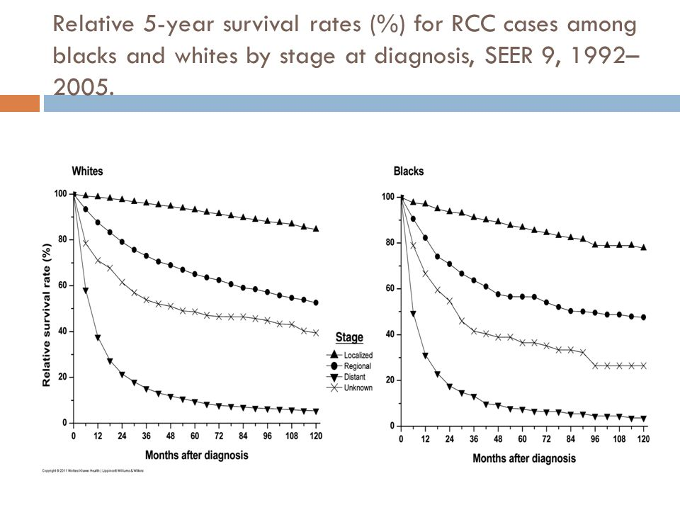 Relative 5-year survival rates (%) for RCC cases among blacks and whites by stage at diagnosis, SEER 9, 1992– 2005.