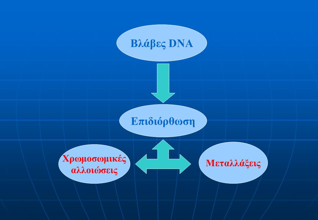 Βλάβες DNA Επιδιόρθωση Χρωμοσωμικές αλλοιώσεις Μεταλλάξεις