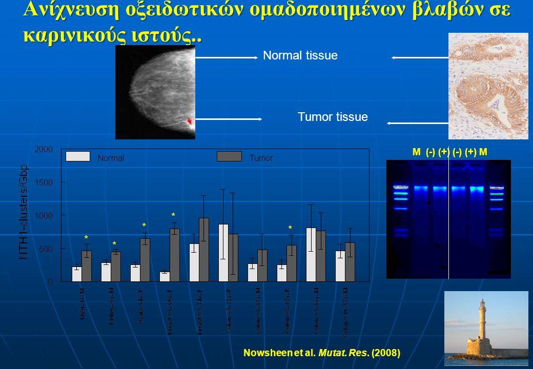 Ανίχνευση οξειδωτικών ομαδοποιημένων βλαβών σε καρινικούς ιστούς.. * * * * * Tumor tissue Normal tissue Nowsheen et al. Mutat. Res. (2008) M (-) (+) (