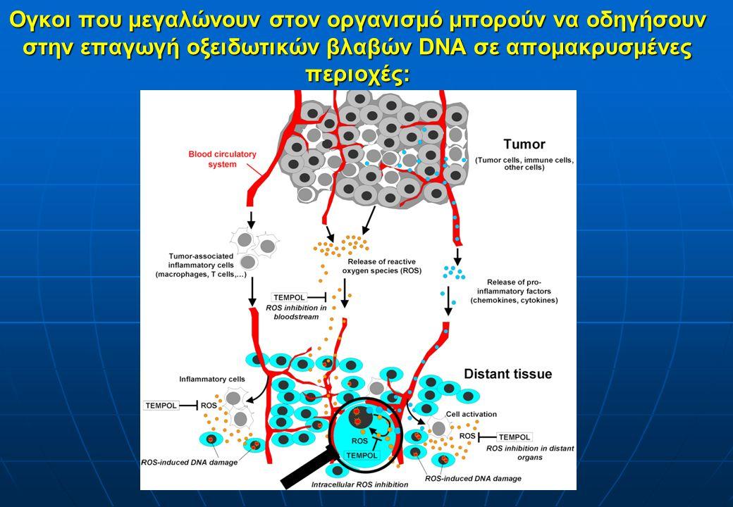 Ογκοι που μεγαλώνουν στον οργανισμό μπορούν να οδηγήσουν στην επαγωγή οξειδωτικών βλαβών DNA σε απομακρυσμένες περιοχές:.