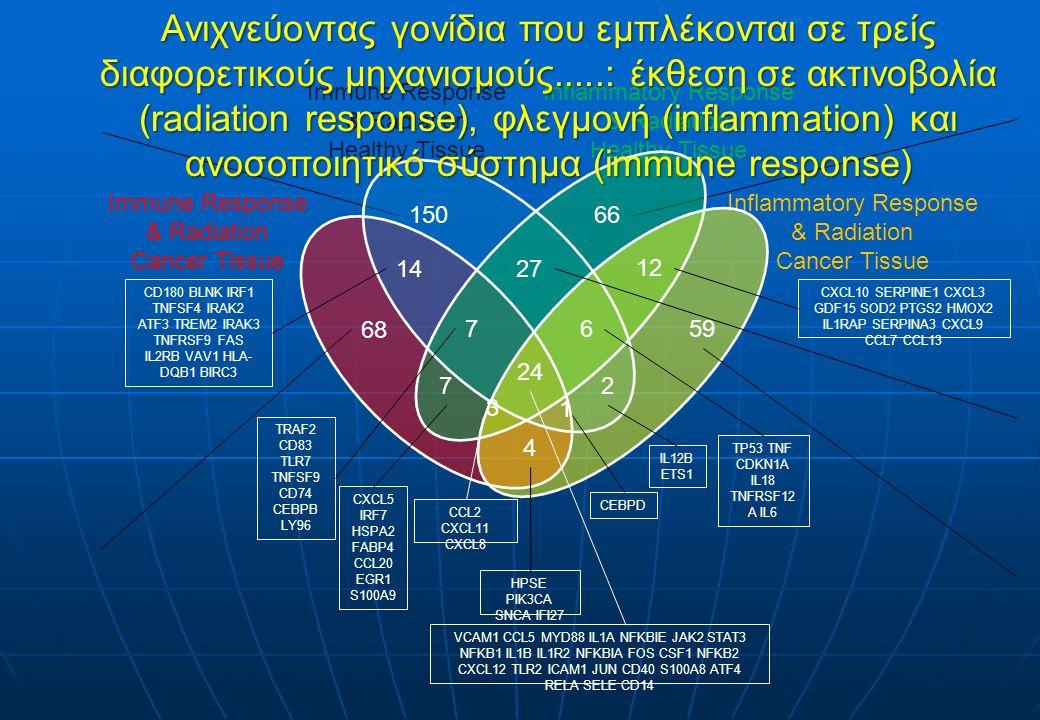 68 150 14 7 7 27 66 12 59 2 6 24 3 4 1 Immune Response & Radiation Healthy Tissue Inflammatory Response & Radiation Healthy Tissue Inflammatory Response & Radiation Cancer Tissue Immune Response & Radiation Cancer Tissue VCAM1 CCL5 MYD88 IL1A NFKBIE JAK2 STAT3 NFKB1 IL1B IL1R2 NFKBIA FOS CSF1 NFKB2 CXCL12 TLR2 ICAM1 JUN CD40 S100A8 ATF4 RELA SELE CD14 CEBPD TRAF2 CD83 TLR7 TNFSF9 CD74 CEBPB LY96 CCL2 CXCL11 CXCL8 HPSE PIK3CA SNCA IFI27 IL12B ETS1 CXCL10 SERPINE1 CXCL3 GDF15 SOD2 PTGS2 HMOX2 IL1RAP SERPINA3 CXCL9 CCL7 CCL13 TP53 TNF CDKN1A IL18 TNFRSF12 A IL6 CXCL5 IRF7 HSPA2 FABP4 CCL20 EGR1 S100A9 CD180 BLNK IRF1 TNFSF4 IRAK2 ATF3 TREM2 IRAK3 TNFRSF9 FAS IL2RB VAV1 HLA- DQB1 BIRC3 Ανιχνεύοντας γονίδια που εμπλέκονται σε τρείς διαφορετικούς μηχανισμούς.....: έκθεση σε ακτινοβολία (radiation response), φλεγμονή (inflammation) και ανοσοποιητικό σύστημα (immune response)