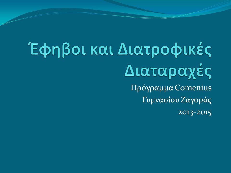 Πρόγραμμα Comenius Γυμνασίου Ζαγοράς 2013-2015