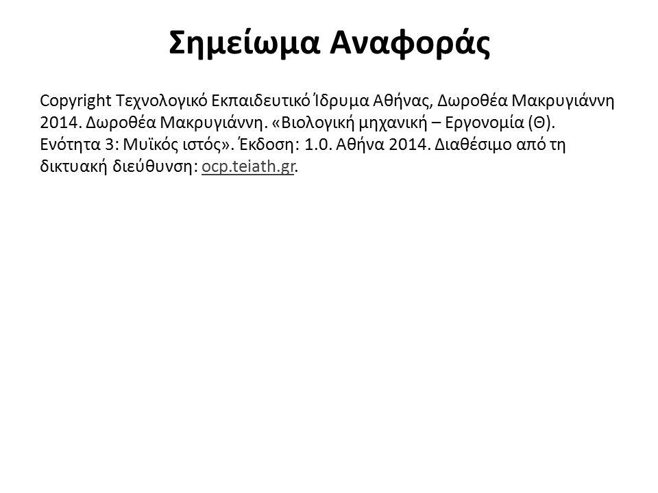 Σημείωμα Αναφοράς Copyright Τεχνολογικό Εκπαιδευτικό Ίδρυμα Αθήνας, Δωροθέα Μακρυγιάννη 2014. Δωροθέα Μακρυγιάννη. «Βιολογική μηχανική – Εργονομία (Θ)