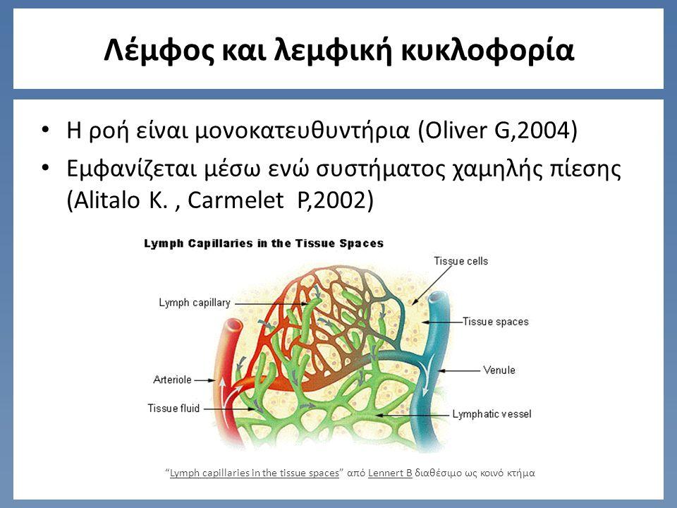 Λεμφική ανεπάρκεια Α) Δυναμική ανεπάρκεια: Χαμηλής πρωτεΐνης οίδημα Υψηλής πρωτεΐνης οίδημα – Τραυματισμοί των αιμοφόρων αγγείων – Ανεπάρκεια βιταμινών Foldi et al,1989 Πίεση των τριχοειδών αγγείων Οσμωτική πίεση του πλάσματος