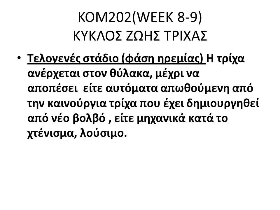 KOM202(WEEK 8-9) KYKΛΟΣ ΖΩΗΣ ΤΡΙΧΑΣ Τελογενές στάδιο (φάση ηρεμίας) Η τρίχα ανέρχεται στον θύλακα, μέχρι να αποπέσει είτε αυτόματα απωθούμενη από την