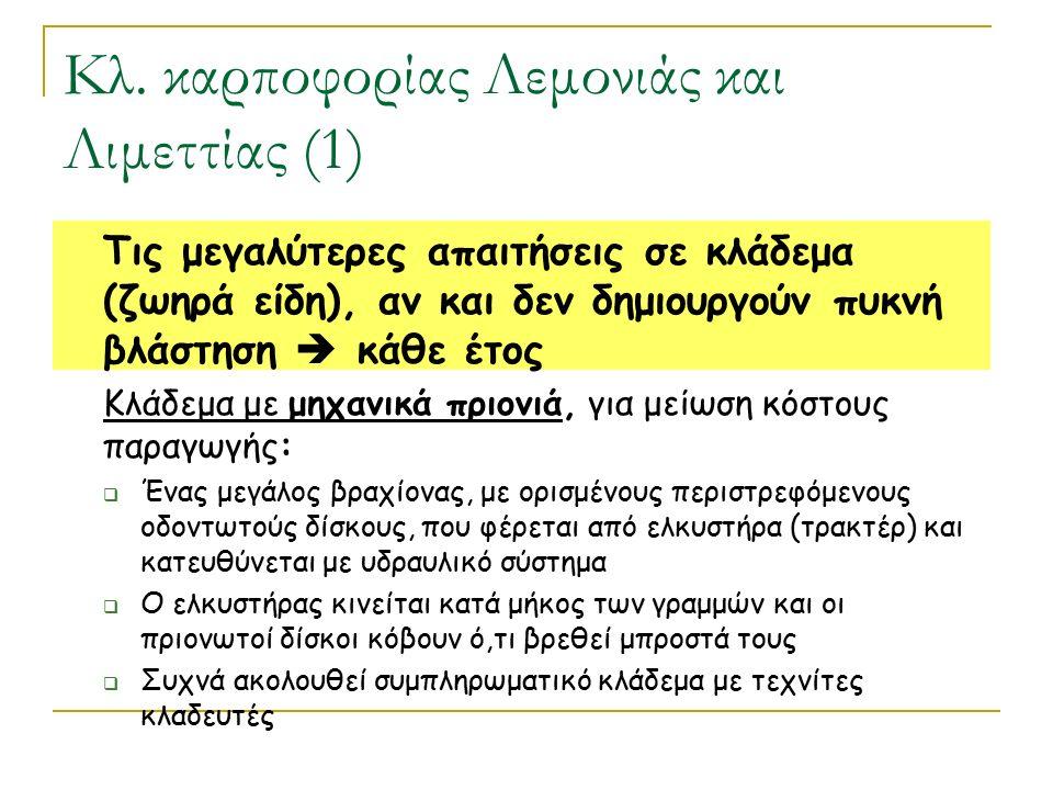 Κλ. καρποφορίας Λεμονιάς και Λιμεττίας (1) Τις μεγαλύτερες απαιτήσεις σε κλάδεμα (ζωηρά είδη), αν και δεν δημιουργούν πυκνή βλάστηση  κάθε έτος Κλάδε