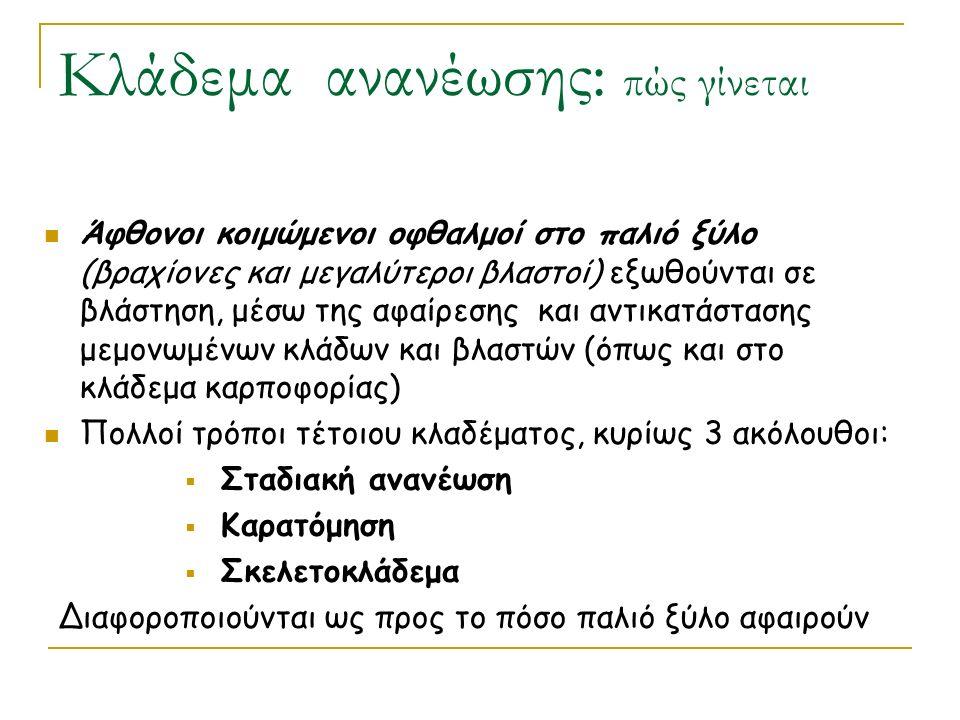 Κλάδεμα ανανέωσης: πώς γίνεται Άφθονοι κοιμώμενοι οφθαλμοί στο παλιό ξύλο (βραχίονες και μεγαλύτεροι βλαστοί) εξωθούνται σε βλάστηση, μέσω της αφαίρεσης και αντικατάστασης μεμονωμένων κλάδων και βλαστών (όπως και στο κλάδεμα καρποφορίας) Πολλοί τρόποι τέτοιου κλαδέματος, κυρίως 3 ακόλουθοι:  Σταδιακή ανανέωση  Καρατόμηση  Σκελετοκλάδεμα Διαφοροποιούνται ως προς το πόσο παλιό ξύλο αφαιρούν