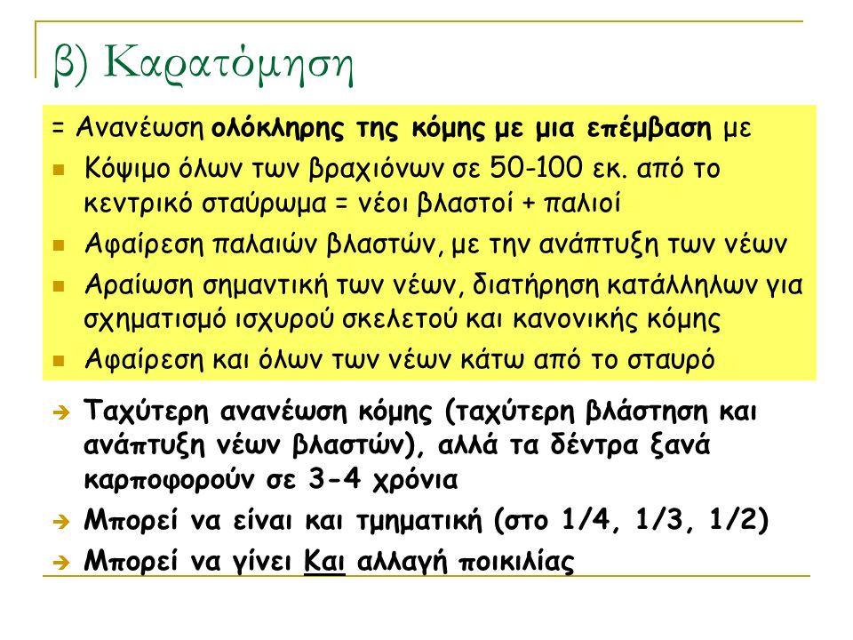 β) Καρατόμηση = Ανανέωση ολόκληρης της κόμης με μια επέμβαση με Κόψιμο όλων των βραχιόνων σε 50-100 εκ. από το κεντρικό σταύρωμα = νέοι βλαστοί + παλι